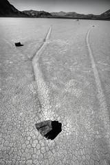 SKid Marks of Moving Rocks of Death Valley (taharaja) Tags: cactus california deathvalley desert furnacecreek ghosttown jeeping lowestpoint nationalpark offroad oldtown racetrack sealevel zabriskiepoint lakebed movingstones slatflats unitedstates