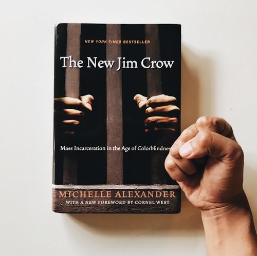 Michelle Alexander book fan photo