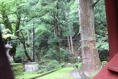 IMG_2648 (normafincher) Tags: japan nikko nikkonationalpark