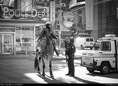 NYPD, New York, United States (Lars-Rollberg.com) Tags: nypd newyork unitedstates timessquare nyc newyorkcity police horse manhattan
