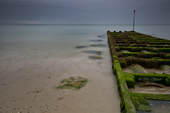 Green outfall (Through Bri`s Lens) Tags: sussex lancing beach seaweed leelittlestopper outfall brianspicer canon5dmk3 canon1635f4