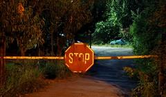 STOP (borisvasilev) Tags: night bulgaria starazagora roadsign stop stopsign travel red digitalphotography olympus travelolympus borissnima europe green car lights light