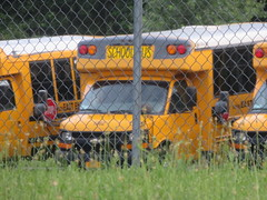 East End Lines #1062 (ThoseGuys119) Tags: eastendbuslinesllc schoolbus medfordny orangecountytransitllc maybrookny bluebird