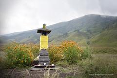 Small Mountain Shrine (Alvin Gunawan) Tags: mountain shrine offerings mountainshrine mountainprayer smallshrine mountbromo tenggershrine offeringsplace naturephotography allnaturelovers bromotour bromosavannah savannah mountainscenery