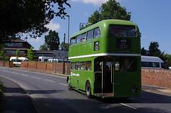 IMGP1948 (Steve Guess) Tags: leatherhead surrey england gb uk lcbs london transport country bus vintage preserved historic aec regent iii rt