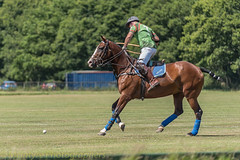 Polo practice a few hits (DaveMac photography) Tags: polo newforest england newforestpoloclub sunday sunnyafternoon ponies equestrian equine mallets events pologame outdoors
