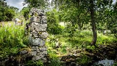 _61A4235.jpg (fotolasse) Tags: stenfors natur nature sweden sverige småland kronoberg å vatten water river bäck sten grönt green canon hdr 16x9 tingsryd