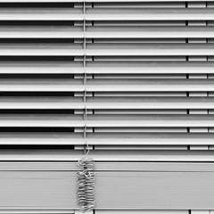 blinds (zeh.hah.es.) Tags: kreis5 zurich zürich schweiz switzerland sw bw bn storen blinds horizontal vertikal wellenförmig undulating