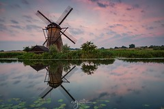 Sunrise in Kinderdijk (Pastel Frames Photography) Tags: holland netherlands kinderdijk sunrise windmill reflection canon5dmark3 canon1635mm tranquility fabulous colors morninglight photography