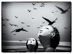 The birds are flying low tonight (Milly M.) Tags: surrealphotography surrealphoto surreal photographybymillym bird myphotography creativephotography layers mono blackwhite bw arty birds
