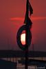 2017-04-13_165 (talentfrei79) Tags: formentera 2017 april abril frühling primavera balearen islas baleares illes balears pityusen mittelmeer mar mediterráneo mediterraneo spanien spain espana españa canon 50d insel island laisla islabonita formenteralovers