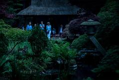 Clingendael (joeyjansen1) Tags: clingendael dutch japanese chinese city garden hague netherlands