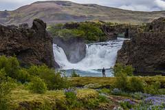 Hjálparfoss (icecold46) Tags: hjálparfoss waterfall nature iceland þjórsárdalur
