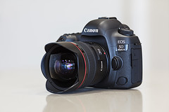 Latest Lovelies (Xenedis) Tags: australia camera canon canonef14mmf28liiusm canoneos5dmarkiv canonlseries dslr equipment gear lens newsouthwales nsw prime primelens slr sydney ultrawidelens wideanglelens