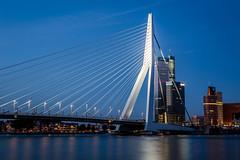Erasmusbrug (vdkchristel) Tags: rotterdam reis uitstap erasmusbrug