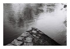 10. (kotmariusz) Tags: edge river corner monochrome bystrzyca analog blackandwhite bw 35mm filmphotography filmisnotdead ilfordfilm ilford pan400 poland świdnica