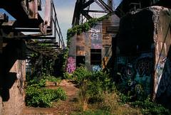 Abandoned coal loading dock 18 (stevensiegel260) Tags: ruins graffiti abandoned coalloadingdock portreading arthurkill industrial railroad
