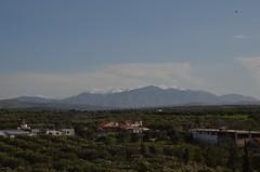 Elia Village - Ελιά Χωριό  (3)