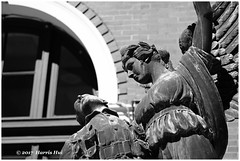 The Fallen - Gastown XP6672e (Harris Hui (in search of light)) Tags: harrishui fujixpro2 digitalmirrorlesscamera fuji fujifilm vancouver richmond bc canada vancouverdslrshooter mirrorless fujixambassador xpro2 fujixcamera fujixseries fujix fuji90mmf2 fujiprimelens fixedlens sculpture statue angel theangelofvictory waterfrontstation bronze bw monochrome digitalbw blackwhite acros acrosbwfilmsimulation art fineart fallen worldwari memorial dead rise heaven icon faces spirit architecture bokeh depthoffield