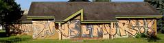Phacyes (Bombardeur) Tags: sud ouest chrome couleur légal illégal plan vandal art urbain street peinture paint éphémère graffiti graf fresque route terrain voie férrée rail panel whole train car tag tags