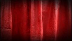 Alternando en Video (VV - dí.) Tags: alternando video julio verano 2017 colección patos abejaruco hojadeverano plumadepavoreal abeja frambuesa rana chupalirios pasodecebra colores francobattiato luna huellasdedinosaurio telaraña zarzamoras agua reflejos sombrero amapolas caracol flor lavanda avena adoquines colour mariposa inspiración sueñosdeverano