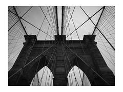M (vfrgk) Tags: brooklynbridge m nyc wires wired cables steel suspension suspensionbridge cablestayed iconic architecture abstractarchitecture monochrome blackandwhite bw complexity lookingup texture lowpov landmark pattern lines artistic architecturalphotography urbanphotography urbanfragment streetphotography bnw art city bigapple bridge old symmetric symmetry