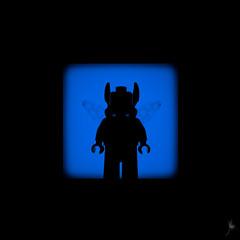Shadow (361/100) - Blue Beetle (Ballou34) Tags: 2016 650d afol ballou34 canon eos eos650d flickr lego legographer legography minifigures photography rebelt4i stuckinplastic t4i toy toyphotography toys rebel 7d mark 2 ii 7d2 7dii eos7d eos7d2 eos7dii stuck plastic puteaux îledefrance france fr blackwhite light shadow photgraphy enevucube minifigure 100shadows 2017 batman dccomics dc comics super heroes gotham blue beetle