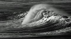 A-frame (OzzRod) Tags: pentax k3 sigma70200mmf28 swell wave surf aframe blackandwhite monochrome sea ocean cuttagee dailyinjune2017