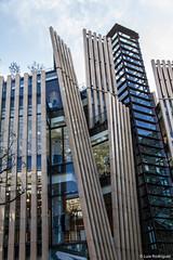 Arquitectura-Omotesando-Aoyama-45 (luisete) Tags: asia kanto tokio japan omotesando aoyama arquitectura japón tokyo añonuevo eventos
