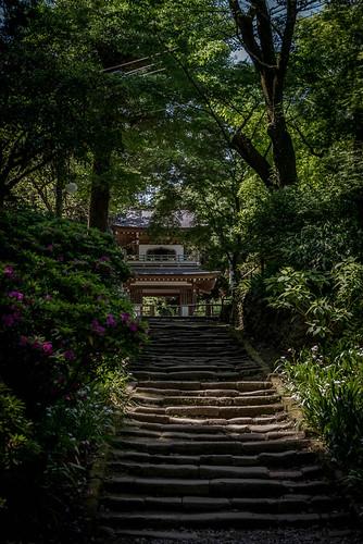 Temple Joshi-ji, Kamakura