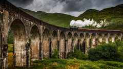 Steam .... (Einir Wyn Leigh) Tags: train landscape viaduct bridge steam scotland scenery rural nature engine outside beauty construction heritage green leaf
