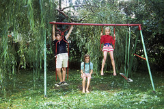 Mr. utterly cool 11 year old me and my admiring flock of lovely girls. (ok... one is my sister and the other is her friend).  My dad installed this swing-set 10 years earlier and by this age, we were totally outgrowing it. Milford Connecticut. Aug 1970 (wavz13) Tags: oldphotographs oldphotos 1970sphotographs 1970sphotos oldphotography 1970sphotography vintagesnapshots oldsnapshots vintagephotographs vintagephotos vintagephotography filmphotos filmphotography family familyphotos familyphotography oldfamilyphotos oldfamilyphotography vintagefamilyphotos vintagefamilyphotography vintagemilford oldmilford 1970smilford vintagewoodmont oldwoodmont 1970swoodmont connecticutphotographs connecticutphotos connecticutphotography oldconnecticutphotography oldconnecticutphotos oldconnecticut vintageconnecticut kodachrome oldslides vintageslides familyslides vintagekodachrome oldkodachrome oldfamilyslides vintage35mm old35mm vintagekids vintageteens vintageteenagers teenmemories teenagememories vintageteengirls vintageteenagegirls longhair oldclothes vintageclothes oldclothing vintageclothing vintageteenboys vintageteenageboys oldswings vintageswings vintagesneakers oldsneakers keds pfflyers
