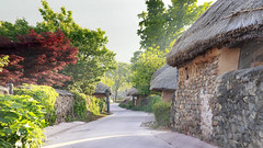 Nagan Folk Villlage (Johnnie Shene Photography(Thanks, 2Million+ Views)) Tags: naganfolkvillage folkvillage village nagan nakan old oldstyle oldfashioned korea korean thatched thatch grasshut thatchedhouse artificial manmade sideview street trail road avenue footpath path sunlight sunbeam lighteffect shadow photography horizontal outdoor colourimage fragility freshness nopeople foregroundfocus adjustment interesting awe wonder fulllength ancient travel destination attraction landmark local rural regional tourism trip journey tradition traditional tranquility tree suncheon jeollanamdo canon eos600d rebelt3i kissx5 sigma 1770mm f284 dc macro lens 순천 낙안읍성 낙안 전통마을 마을 여행 관광
