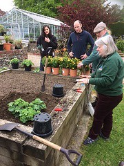 planting demo at H Court