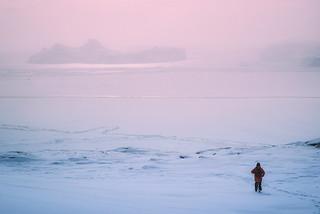 Icefjord Mist