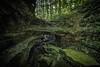 The Entrance (color) (Sine--Qua--Non) Tags: landscape landscapes nature outdoors statepark mccormickscreek indianastateparks indianalandscape indianalandscapes hdr hdrlandscape subtlehdr indiana wolfcave cave caves