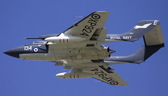 "Sea Vixen ""Foxy Lady"" (Tim Bullock Photography) Tags:"