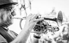 Trumpeter (yravaryphotoart.com) Tags: yravaryphotoart yravaryphotoartcom canoneos7d canon canonef40mmf28stmpancake closeup trompetiste trumpeter musique music montreal placejacquescartier vieuxmontreal cuivre monochrome noiretblanc blackwhite