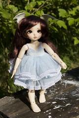 Custom order (~Akara~) Tags: bjd abjd ball jointed doll fairyland fairy land fl littlefee little fee ltf mod modded eyes luna custom faceup face up handmade dress tulle blue white lace