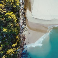 Wattamolla Beach Water Nature No People Day Beauty In Nature Outdoors Sea Scenics Beach Close-up Aerial Aerial Shot Drone (alexkess) Tags: water nature nopeople day beautyinnature outdoors sea scenics beach closeup aerial aerialshot drone