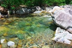 Iwana River DSC_3487 (touhenboku) Tags: iwana char fly fishing flyfishing stram river headwater clearwater underwater