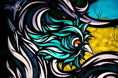 Graffiato (Coisroux) Tags: graffiti graffiato painting artists modernart streetart urbanart warehouse colourful d5500 nikod nikkor traversecity art hawk modernism suburbanstreetart eagleart design decay