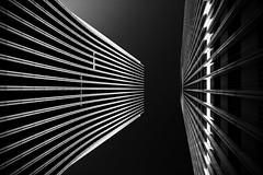 untitled (Noisy Paradise) Tags: tokyo shinjuku night longexposure skyscraper building japan architecture monochrome blackwhite bw sky light sfd sigmadp0quattro foveon 東京 夜 長時間露光