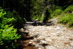 DSCF6110 (Miroslav Pivovarsky) Tags: vysoke tatry slovak slovakia natur nature outdoor fujifilm x70 mountains hiking hikings strbske pleso tarn sun day sunday