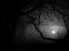 The Marston House (david alexander barnett) Tags: spooky old house hill moon night nighttime atmosphere scary tree