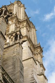 Les Chimères de la Cathédrale Notre-Dame de Paris