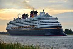 Disney Magic (Hugo Sluimer) Tags: cruiseship cruise cruises cruiseterminal disneymagix disney magic