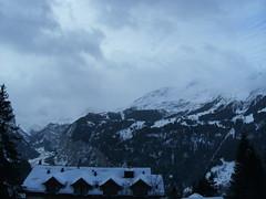 ... ... ...Guten MOrgen... (project:2501) Tags: wengen jungfrauregion suisse switzerland snow ski travel hotel hotelbelvédère hotelroom artnouveau 1912 view aroomwithaview balcony theviewfromhere morning morninglight bluelight blue bluebleu bleu sunrise inthemountains mountains mountain rock pinetrees alpinefauna stellifluh2232m mürren1634m jungfrau4158m breithorn3782m tschingelhorn3557m gspaltenhorn3437m