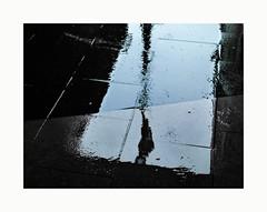 Alcools (hélène chantemerle) Tags: pluie reflets silhouettes ville cité paris noirblanc rain reflections city walkers figure water blackwhite blue