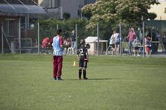 TORNEO CALCIO FRISO_4 copia (danyferr) Tags: wwwdavidericottacom 1°memorialfrisociro davidericotta pianezza calcio